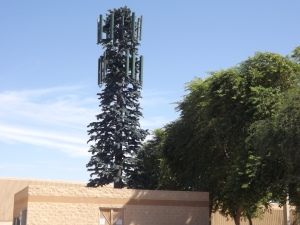 Cell tower disguised as tall pine tree