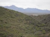 Bursera Trail descending from it's peak elevation.